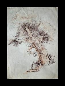"""Study of Tree"""